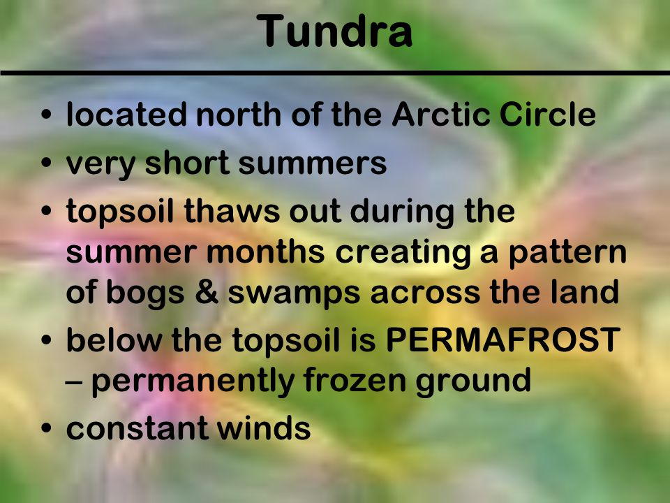 Tundra located north of the Arctic Circle very short summers topsoil thaws out during the summer months creating a pattern of bogs & swamps across the