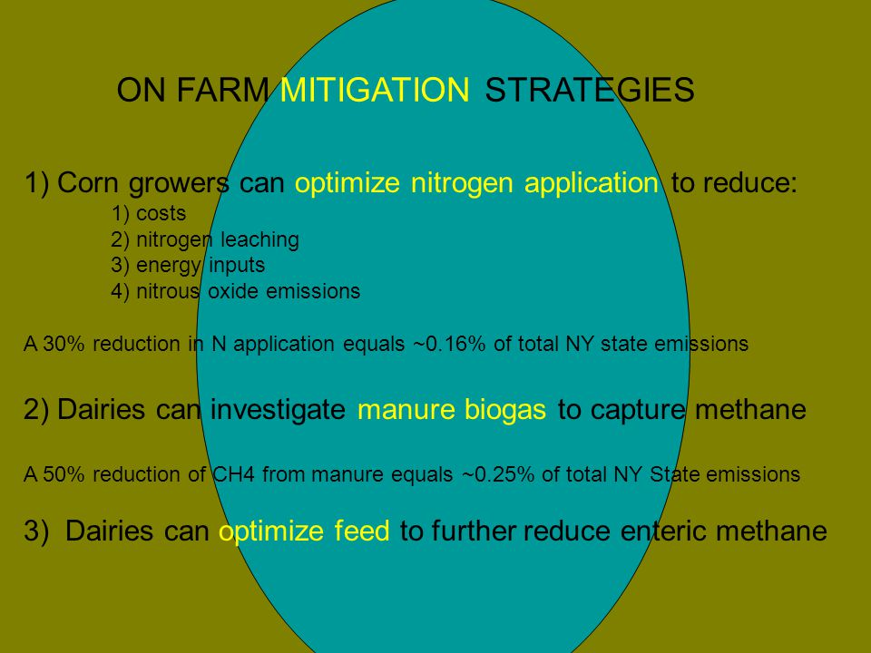 1) Corn growers can optimize nitrogen application to reduce: 1) costs 2) nitrogen leaching 3) energy inputs 4) nitrous oxide emissions A 30% reduction in N application equals ~0.16% of total NY state emissions 2) Dairies can investigate manure biogas to capture methane A 50% reduction of CH4 from manure equals ~0.25% of total NY State emissions 3) Dairies can optimize feed to further reduce enteric methane ON FARM MITIGATION STRATEGIES