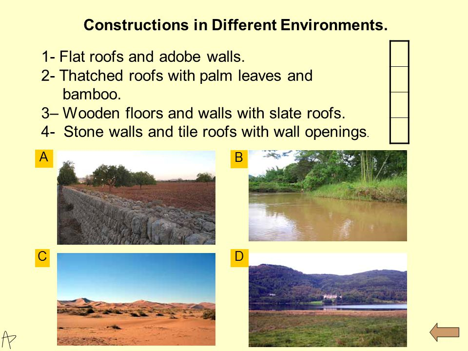 1- Flat roofs and adobe walls. 2- Thatched roofs with palm leaves and bamboo. 3– Wooden floors and walls with slate roofs. 4- Stone walls and tile roo