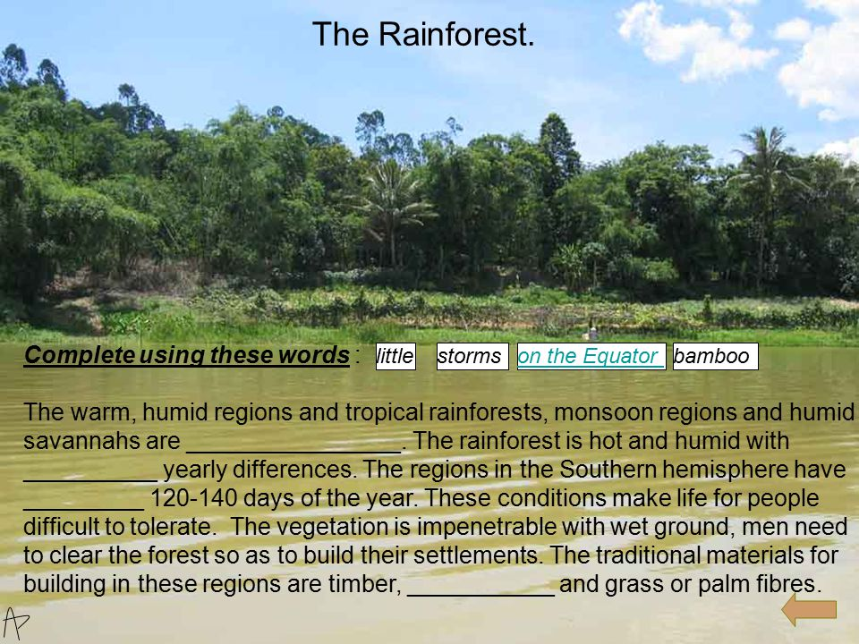 Complete using these words : The warm, humid regions and tropical rainforests, monsoon regions and humid savannahs are ________________. The rainfores