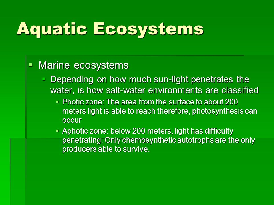  Marine ecosystems  Depending on how much sun-light penetrates the water, is how salt-water environments are classified  Photic zone: The area from the surface to about 200 meters light is able to reach therefore, photosynthesis can occur  Aphotic zone: below 200 meters, light has difficulty penetrating.