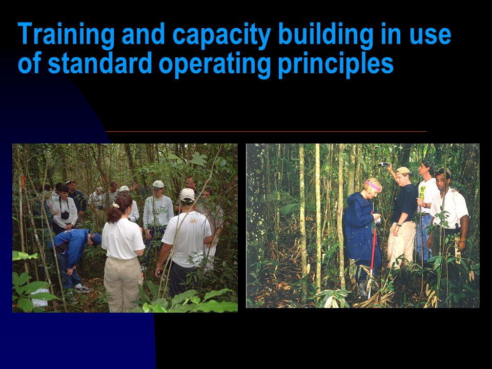 Training and capacity building in use of standard operating principles