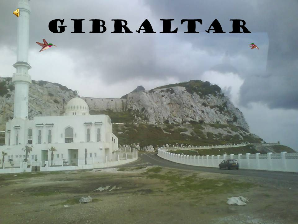 .Firstly, a presentation about the typical things in Gibraltar that can be seen in the street..Secondly, tourist places in Gibraltar that we can see in our trip..And finally, an exhibition about our photographs.