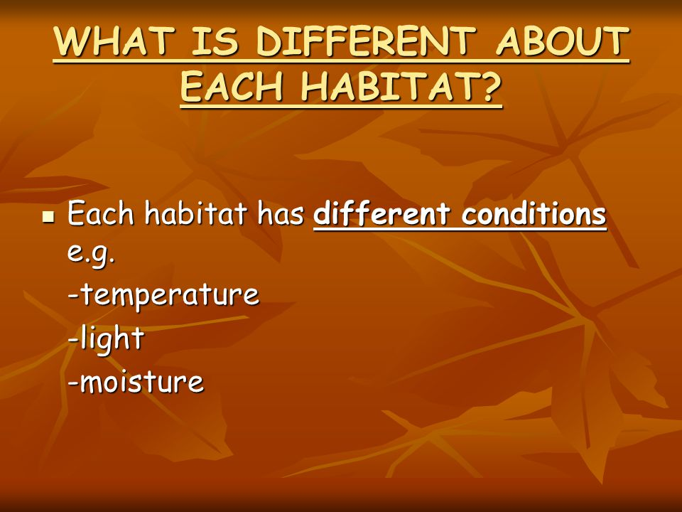 WHAT IS DIFFERENT ABOUT EACH HABITAT. Each habitat has different conditions e.g.