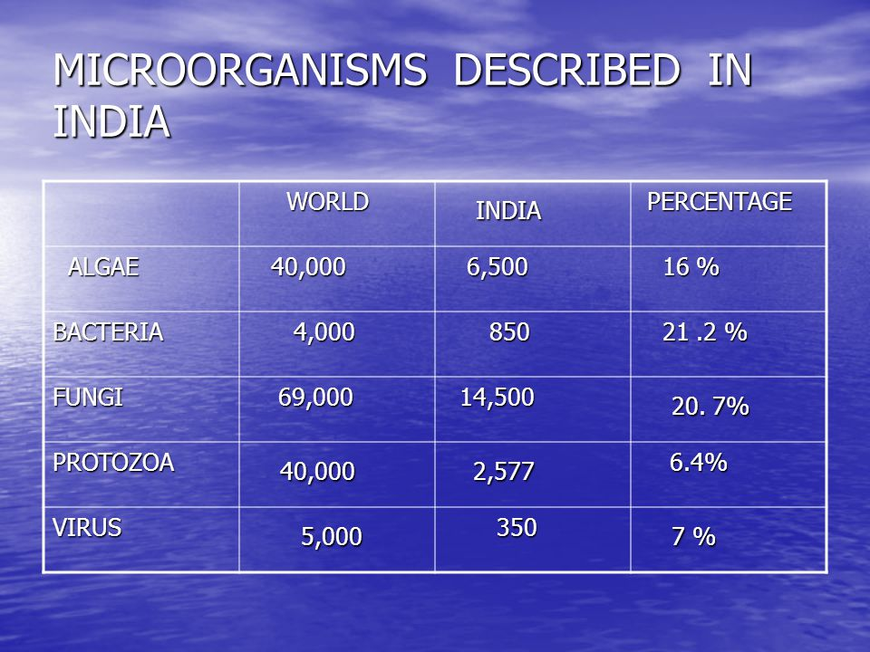 MICROORGANISMS DESCRIBED IN INDIA WORLD WORLD INDIA INDIA PERCENTAGE PERCENTAGE ALGAE ALGAE 40,000 40,000 6,500 6,500 16 % 16 % BACTERIA 4,000 4,000 850 850 21.2 % 21.2 % FUNGI 69,000 69,000 14,500 14,500 20.