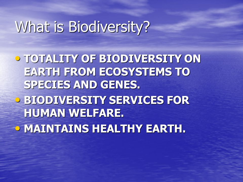 What is Biodiversity.TOTALITY OF BIODIVERSITY ON EARTH FROM ECOSYSTEMS TO SPECIES AND GENES.