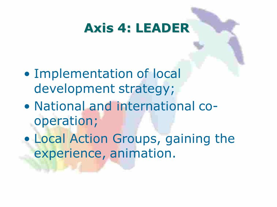Axis 4: LEADER Implementation of local development strategy; National and international co- operation; Local Action Groups, gaining the experience, animation.