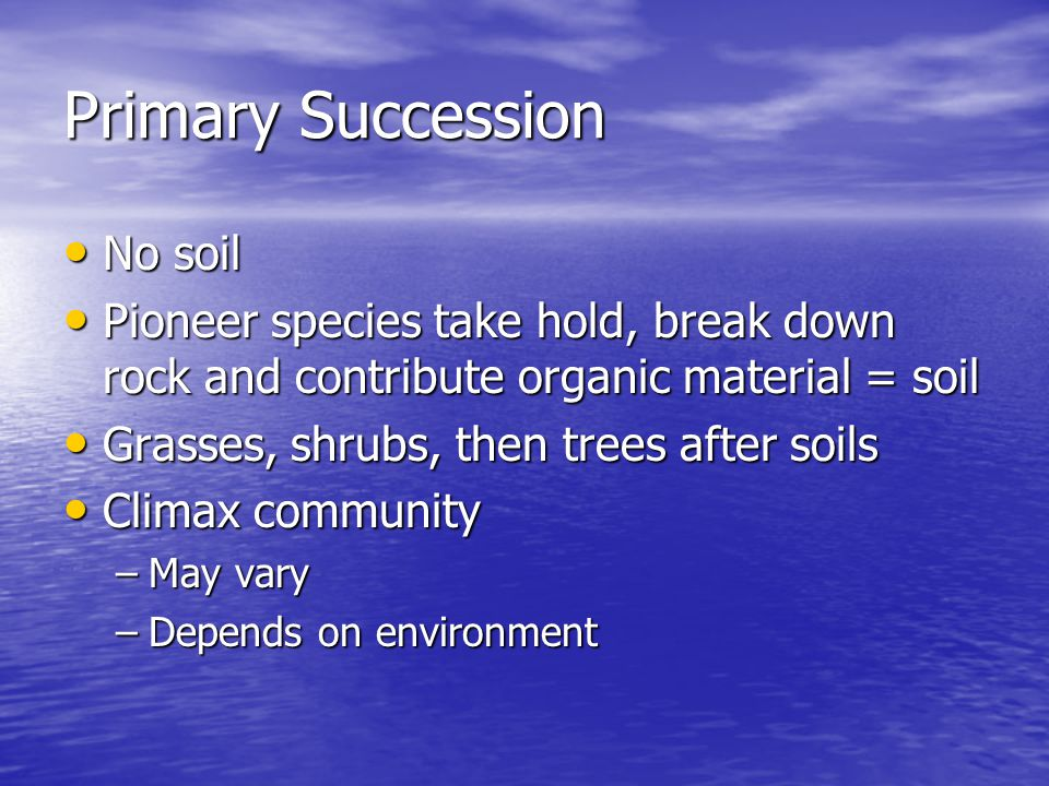 Primary Succession No soil No soil Pioneer species take hold, break down rock and contribute organic material = soil Pioneer species take hold, break down rock and contribute organic material = soil Grasses, shrubs, then trees after soils Grasses, shrubs, then trees after soils Climax community Climax community –May vary –Depends on environment