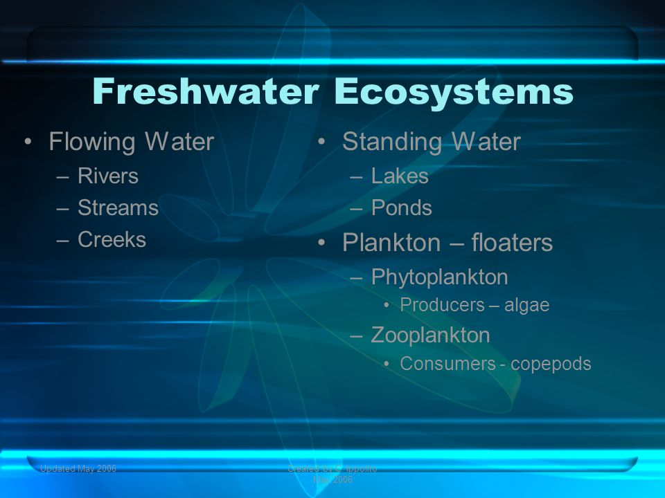 Updated May 2006Created by C. Ippolito May 2006 Aquatic Ecosystems Communities vary based on: 1.Depth 2.Flow 3.Temperature 4.Chemistry