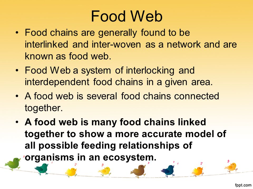 Food chains are generally found to be interlinked and inter-woven as a network and are known as food web. Food Web a system of interlocking and interd