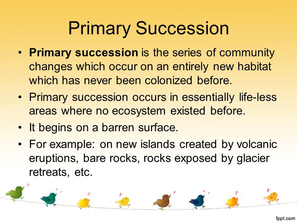 Primary succession is the series of community changes which occur on an entirely new habitat which has never been colonized before. Primary succession