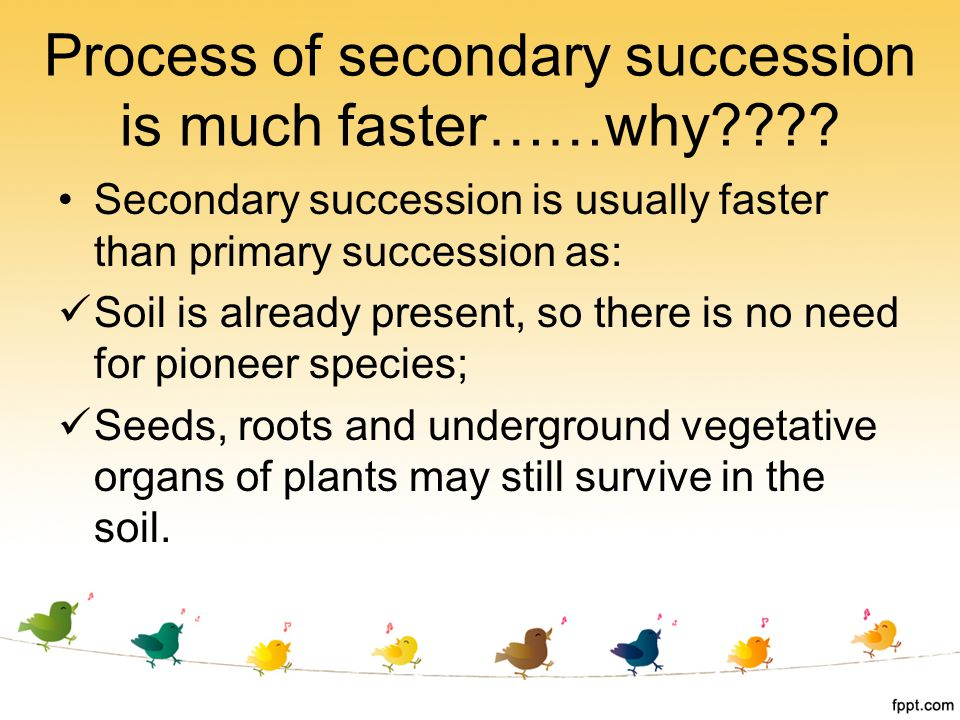 Process of secondary succession is much faster……why???? Secondary succession is usually faster than primary succession as: Soil is already present, so