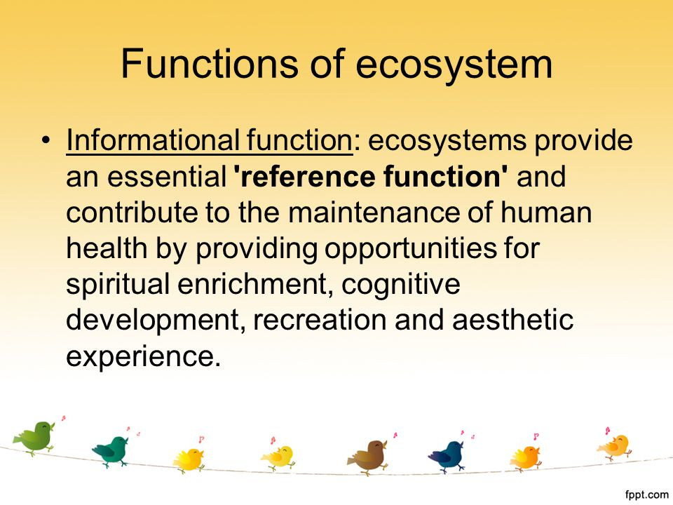 Informational function: ecosystems provide an essential 'reference function' and contribute to the maintenance of human health by providing opportunit