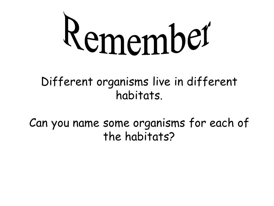 Different organisms live in different habitats. Can you name some organisms for each of the habitats?