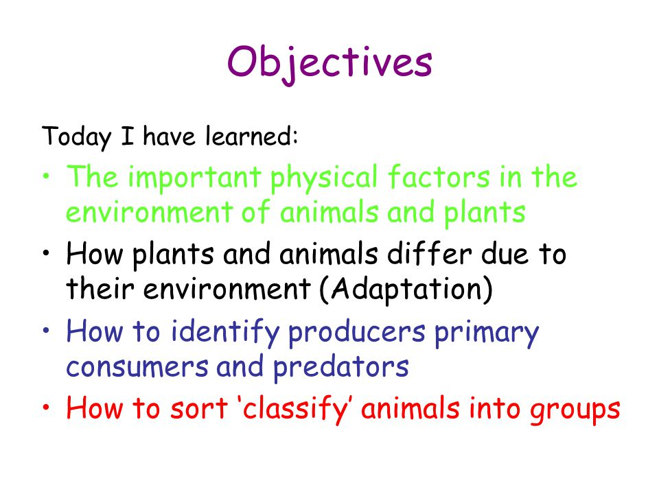 Objectives Today I have learned: The important physical factors in the environment of animals and plants How plants and animals differ due to their en