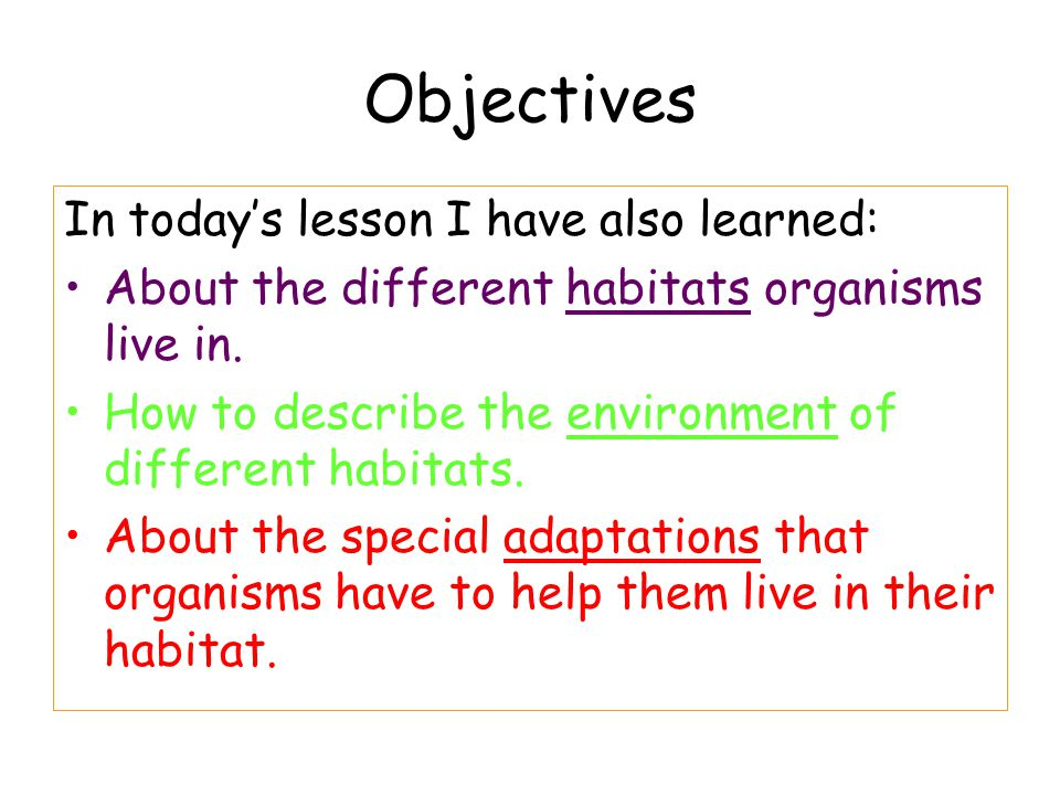 Objectives In today's lesson I have also learned: About the different habitats organisms live in. How to describe the environment of different habitat