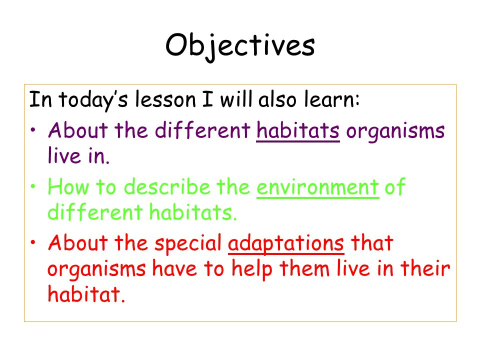 Objectives In today's lesson I will also learn: About the different habitats organisms live in. How to describe the environment of different habitats.