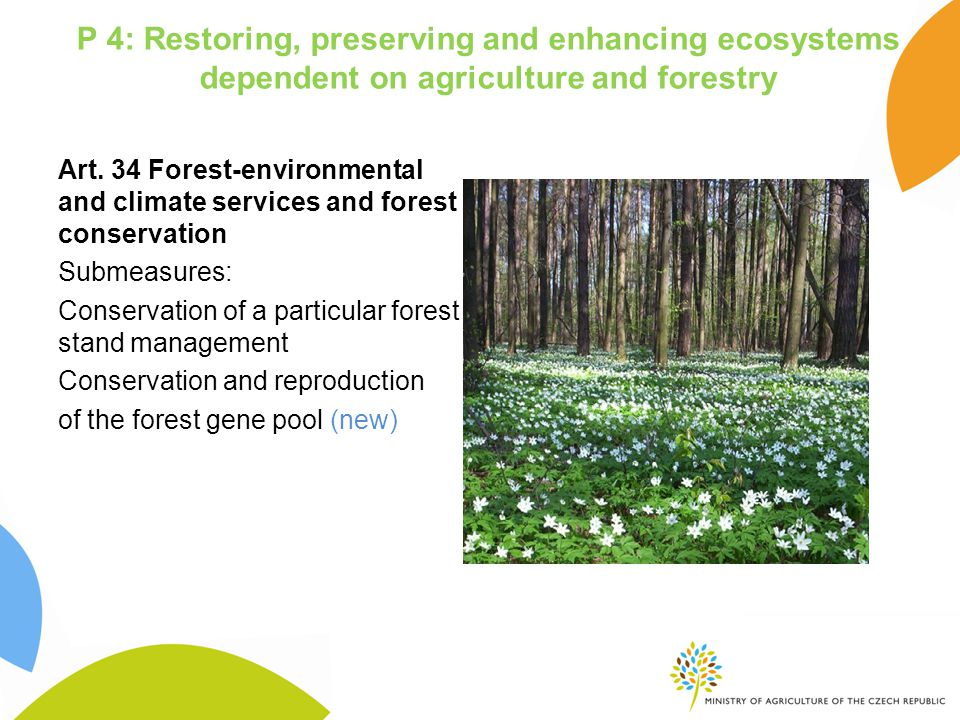 Art. 34 Forest-environmental and climate services and forest conservation Submeasures: Conservation of a particular forest stand management Conservati