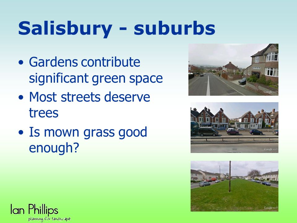 Salisbury - suburbs Gardens contribute significant green space Most streets deserve trees Is mown grass good enough?