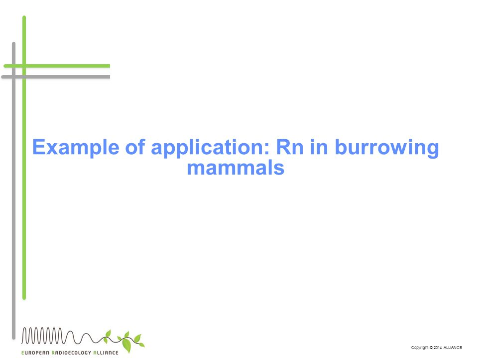 Copyright © 2014 ALLIANCE Example of application: Rn in burrowing mammals