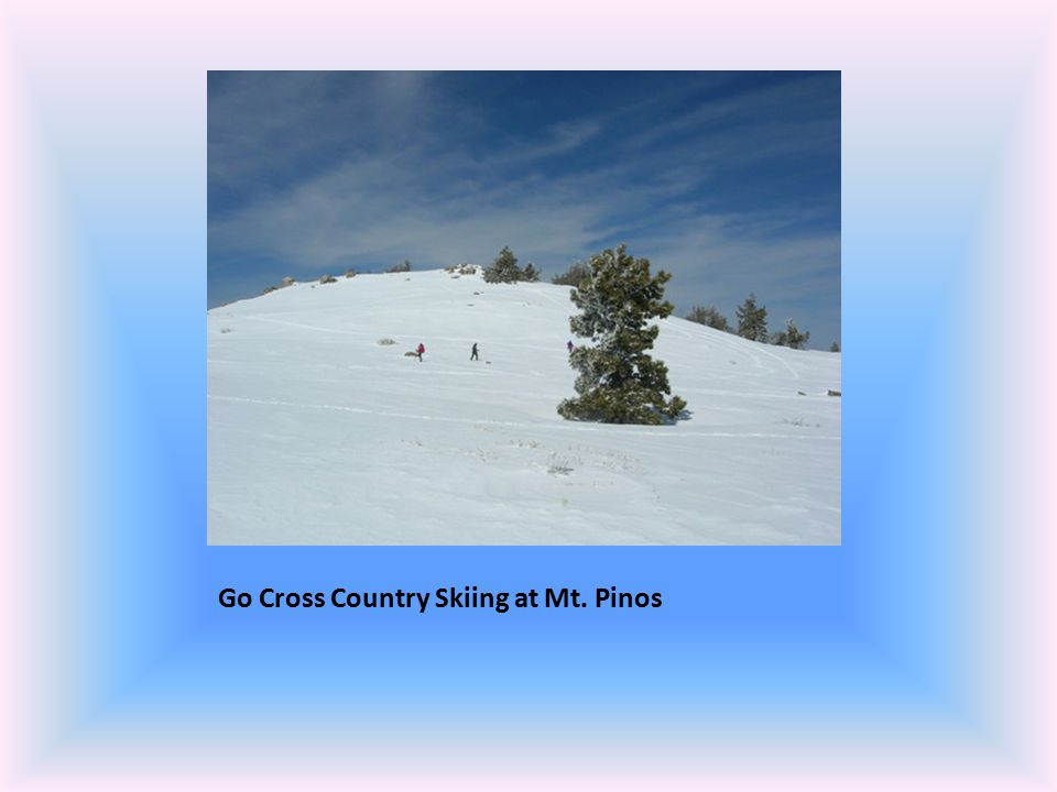 Go Cross Country Skiing at Mt. Pinos