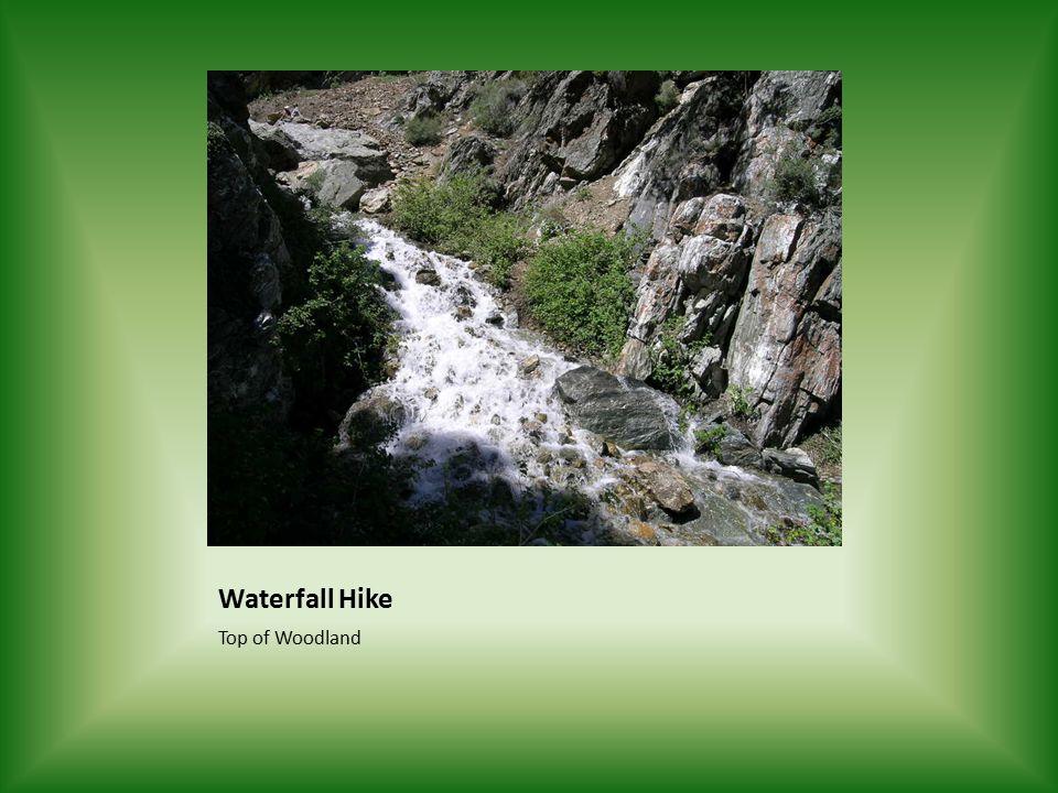 Waterfall Hike Top of Woodland