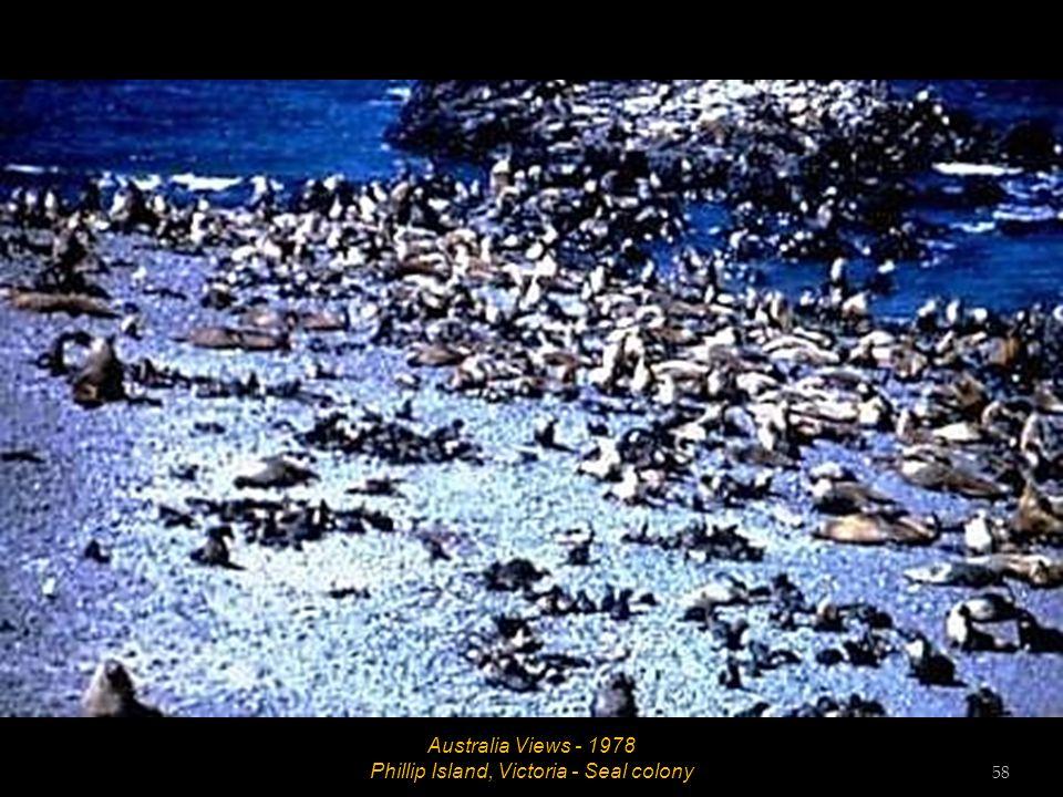 Australia Views - 1978 Kiama, New South Wales - Blowhole 57