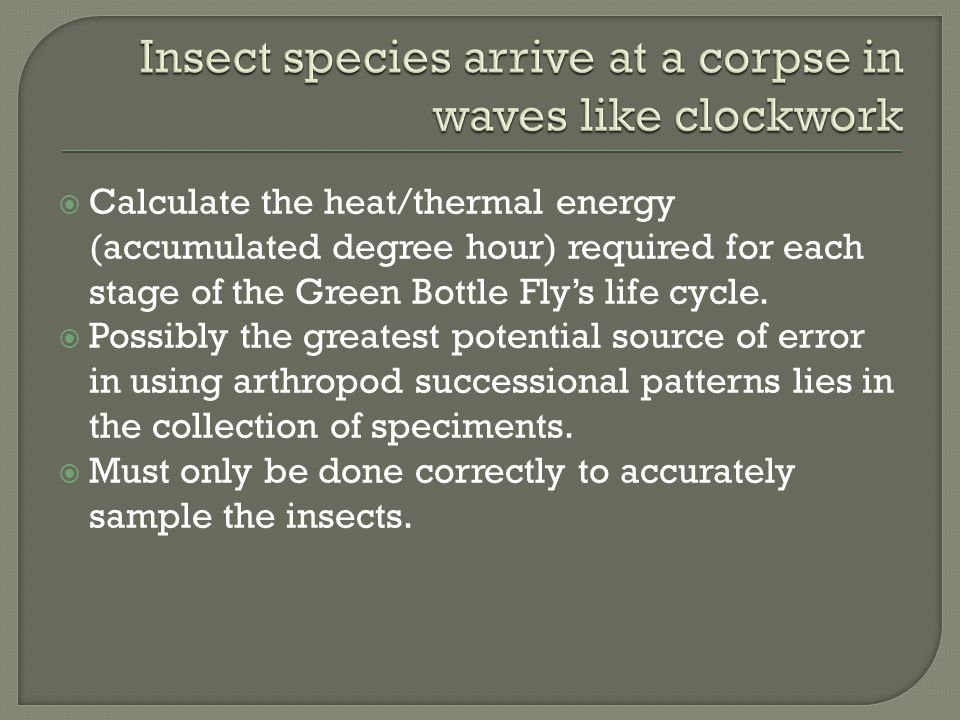  Calculate the heat/thermal energy (accumulated degree hour) required for each stage of the Green Bottle Fly's life cycle.  Possibly the greatest po