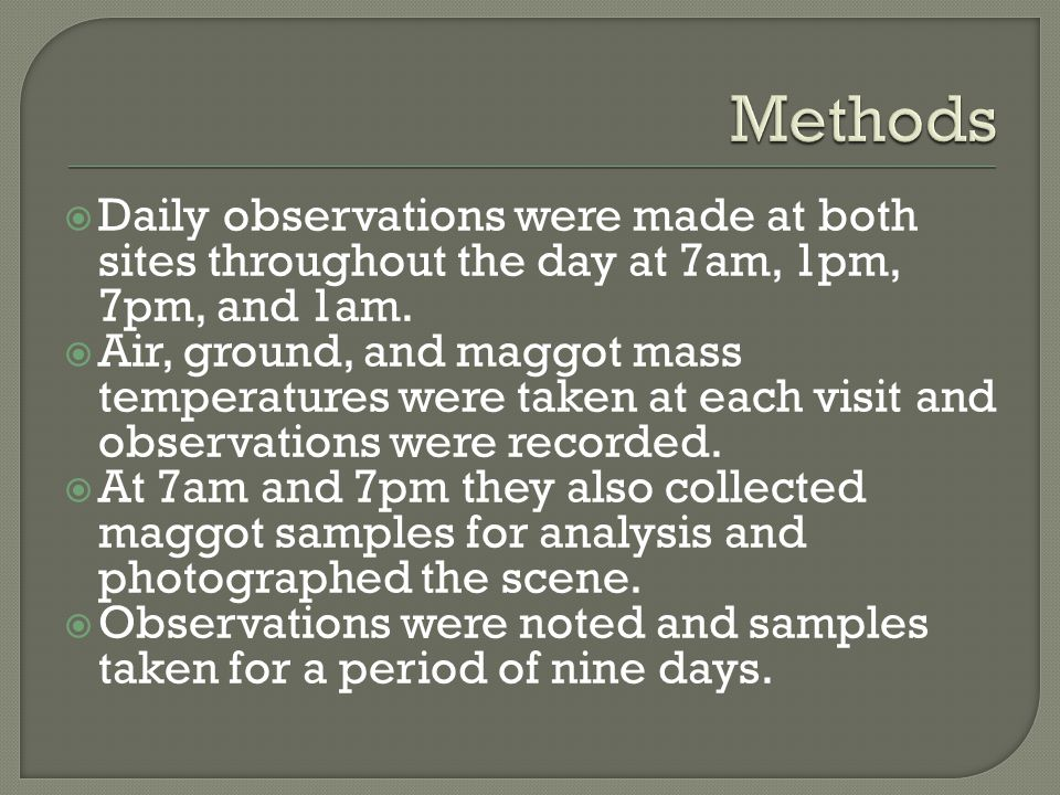  Daily observations were made at both sites throughout the day at 7am, 1pm, 7pm, and 1am.  Air, ground, and maggot mass temperatures were taken at e