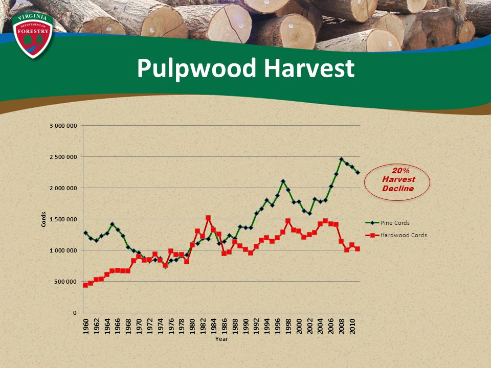Pulpwood Harvest