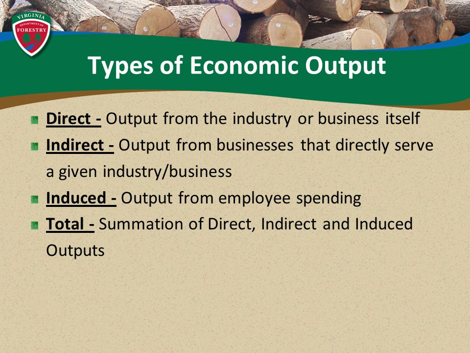 Direct - Output from the industry or business itself Indirect - Output from businesses that directly serve a given industry/business Induced - Output from employee spending Total - Summation of Direct, Indirect and Induced Outputs Types of Economic Output