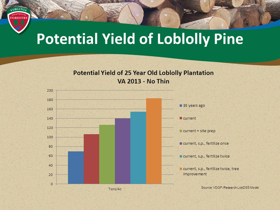 Source: VDOF-Research LobDSS Model Potential Yield of Loblolly Pine