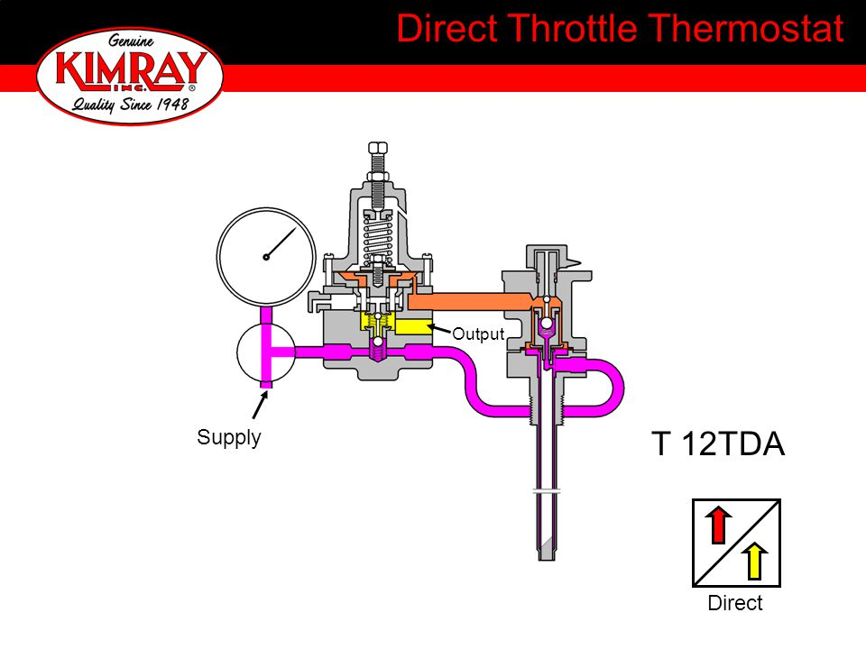 Direct Throttle Thermostat T 12TDA Output Supply Direct