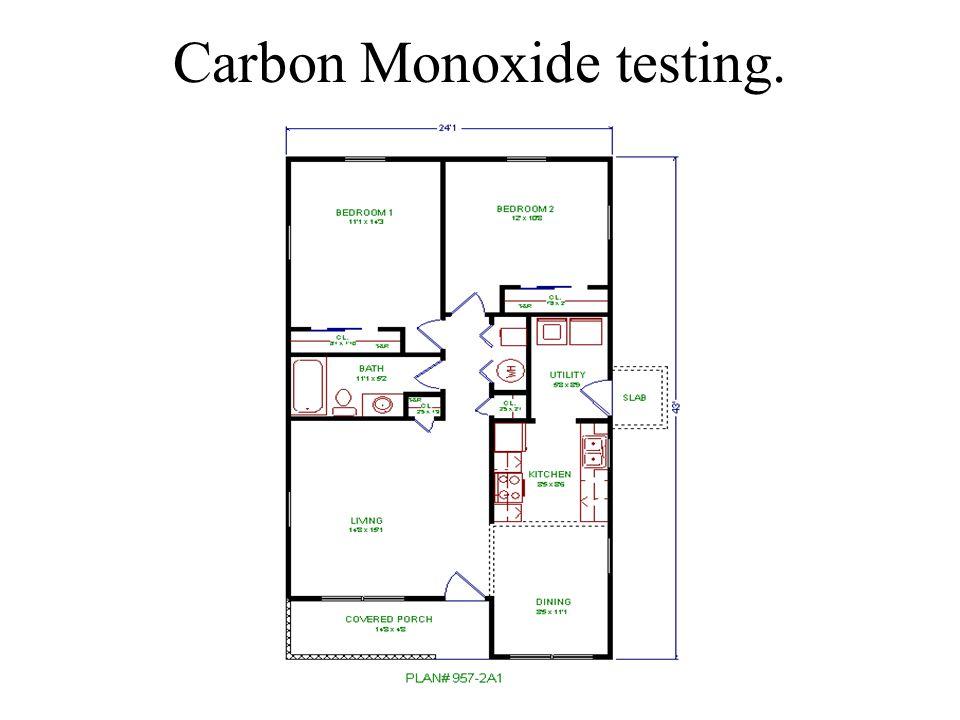 Carbon Monoxide testing.