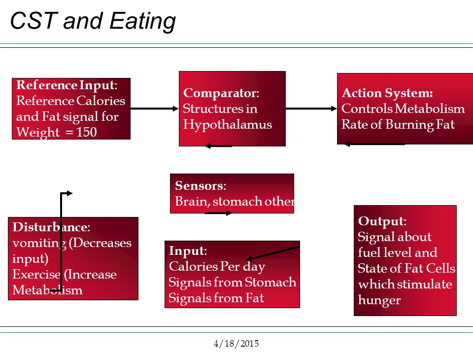 4/18/2015 CST and Eating Reference Input : Reference Calories and Fat signal for Weight = 150 Comparator : Structures in Hypothalamus Action System: C