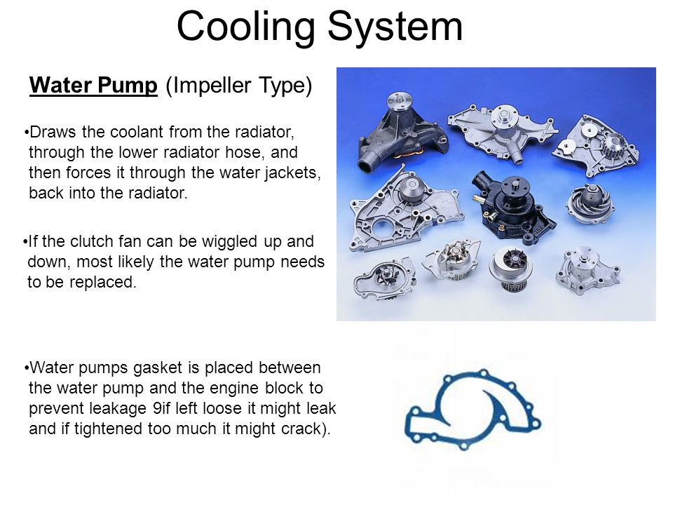 Cooling System Water Pump (Impeller Type) Draws the coolant from the radiator, through the lower radiator hose, and then forces it through the water j