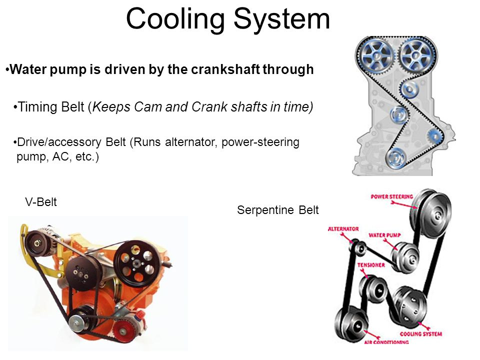 Cooling System Water pump is driven by the crankshaft through Timing Belt (Keeps Cam and Crank shafts in time) Drive/accessory Belt (Runs alternator,
