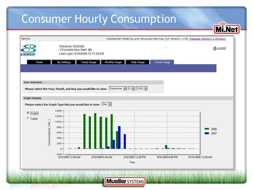 Consumer Hourly Consumption