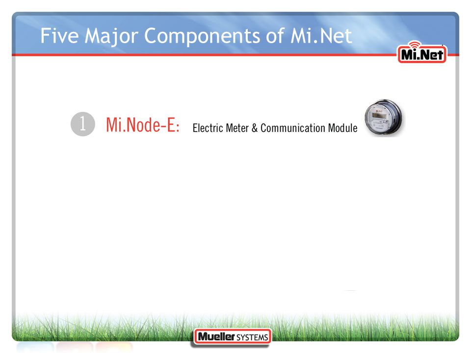 Information Access Web access of meter data by: UtilityCustomer