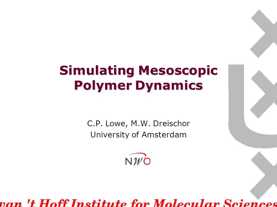 The problem The large size of polymers makes their dynamics slow and complex