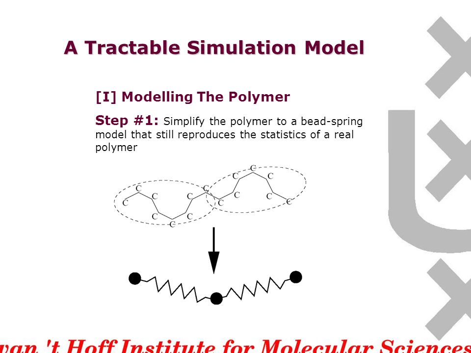 A Tractable Simulation Model [I] Modelling The Polymer We still need to simplify the problem because simulating even this at the atomic level needs t ~ 10 -9 s.