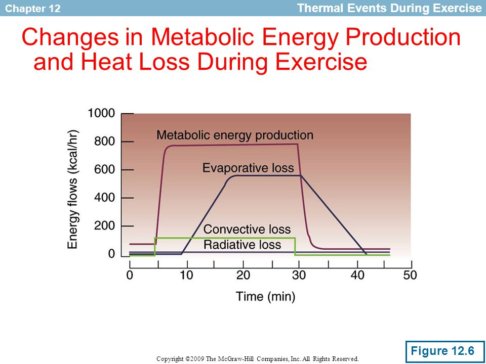 Chapter 12 Copyright ©2009 The McGraw-Hill Companies, Inc. All Rights Reserved. Changes in Metabolic Energy Production and Heat Loss During Exercise T