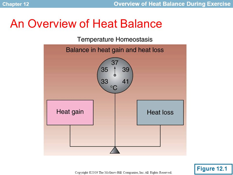 Chapter 12 Copyright ©2009 The McGraw-Hill Companies, Inc. All Rights Reserved. An Overview of Heat Balance Overview of Heat Balance During Exercise F