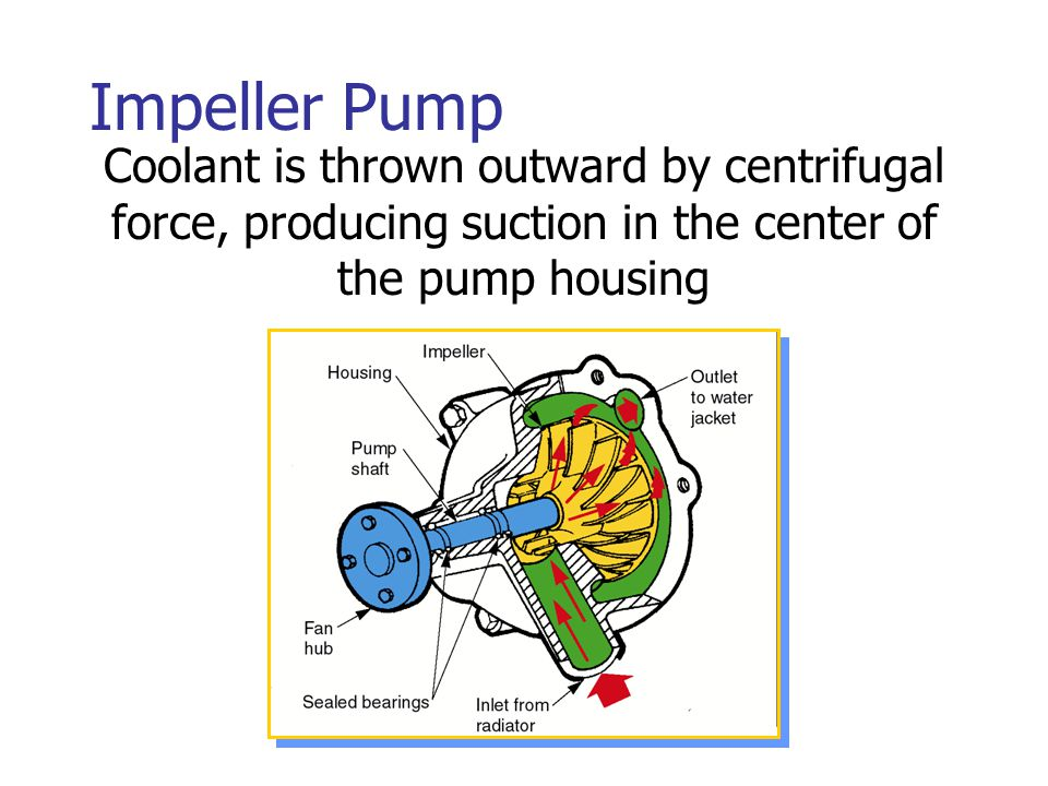 Impeller Pump Coolant is thrown outward by centrifugal force, producing suction in the center of the pump housing