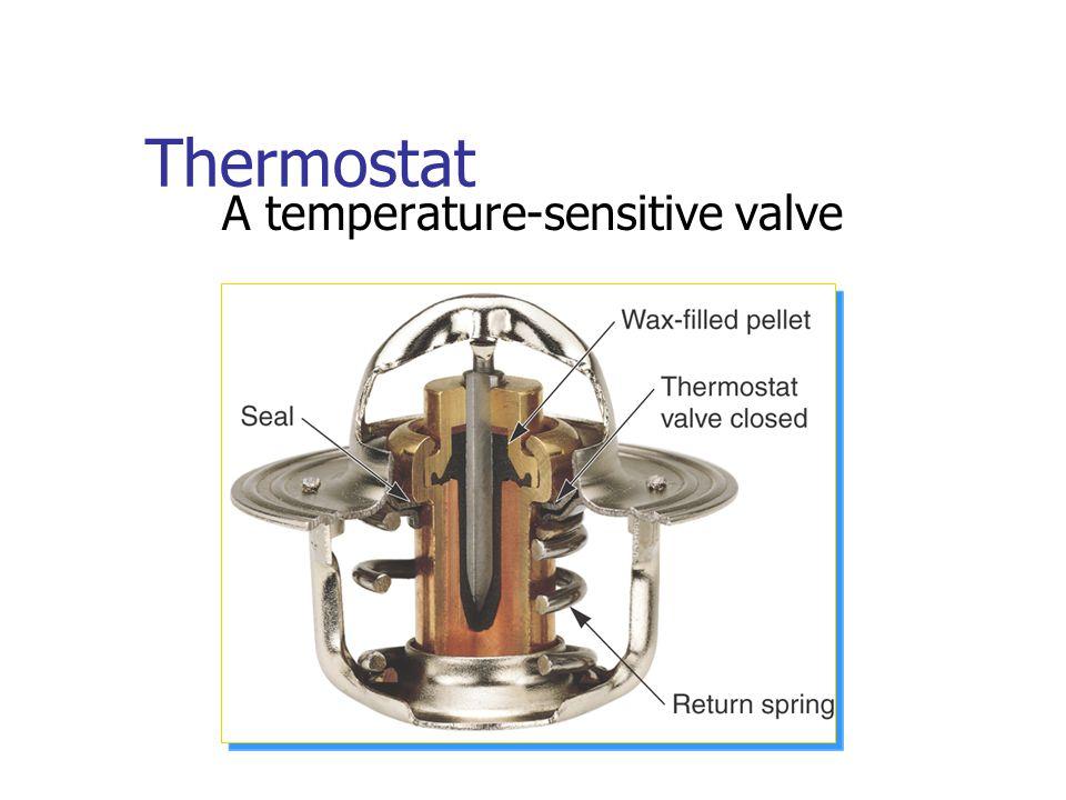 Thermostat A temperature-sensitive valve