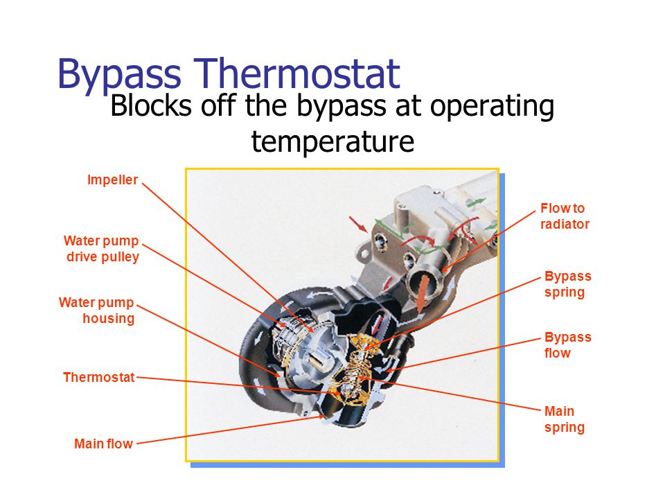 Bypass Thermostat Blocks off the bypass at operating temperature Impeller Water pump drive pulley Water pump housing Thermostat Main flow Flow to radi