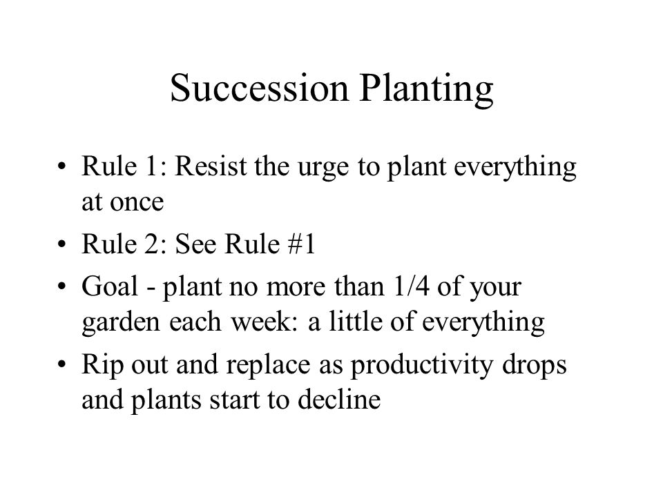 Succession Planting Rule 1: Resist the urge to plant everything at once Rule 2: See Rule #1 Goal - plant no more than 1/4 of your garden each week: a little of everything Rip out and replace as productivity drops and plants start to decline