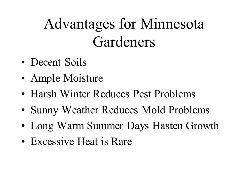 Advantages for Minnesota Gardeners Decent Soils Ample Moisture Harsh Winter Reduces Pest Problems Sunny Weather Reduces Mold Problems Long Warm Summer Days Hasten Growth Excessive Heat is Rare