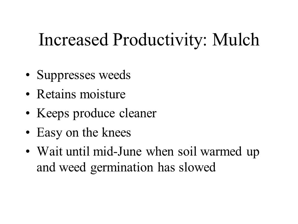 Increased Productivity: Mulch Suppresses weeds Retains moisture Keeps produce cleaner Easy on the knees Wait until mid-June when soil warmed up and weed germination has slowed