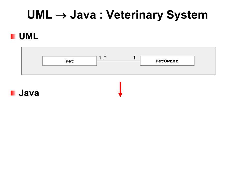 UML  Java : Veterinary System UML Java